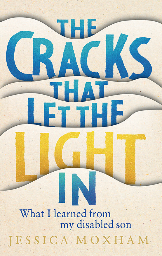 Front cover of book titled The Cracks that Let the Light In